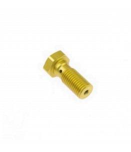 TRW śruba drążona krótka M10x1,25 złota